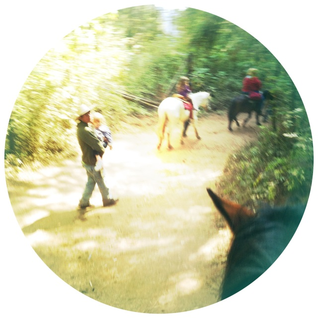 Horses + Hiking = Monarch Viewing